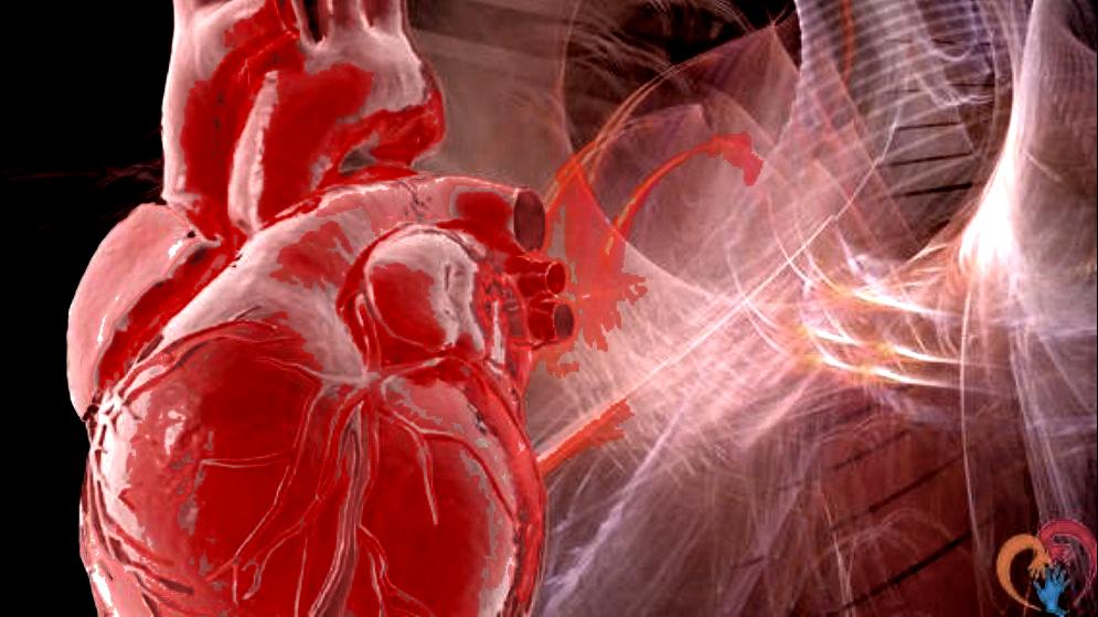 CardioPeople 2